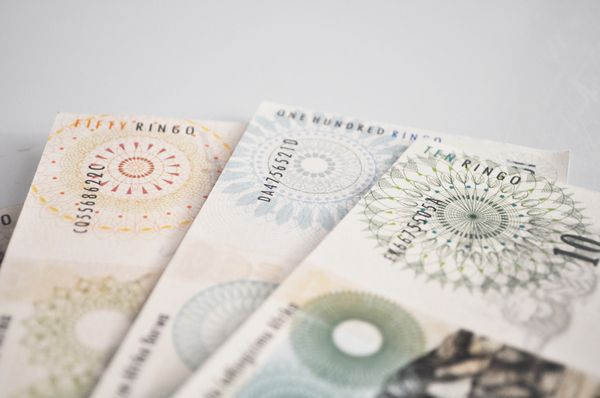 South African Bank notes by Lynn-Marie Cronje, via Behance