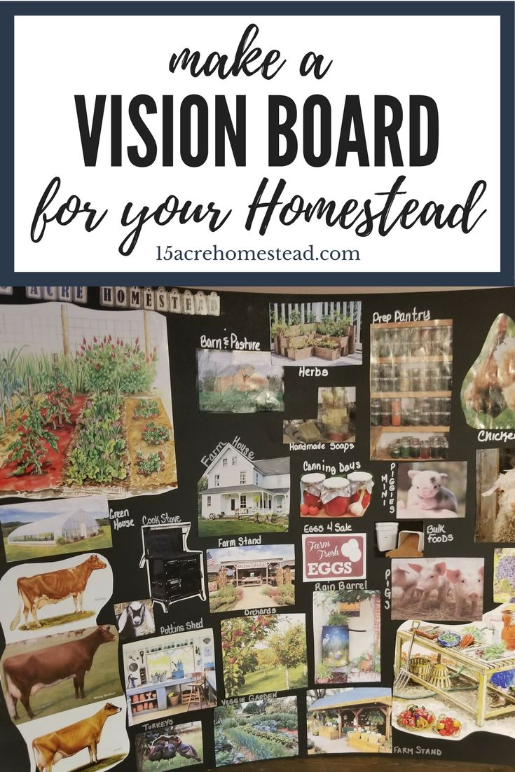 best 25 homesteads ideas on pinterest small farm hobby farms