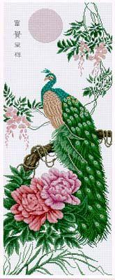 Pinn Stitch Dignity The Peacock - Cross Stitch Pattern. Model stitched on 14 ct white Aida using DMC floss. Stitch count 140x350.