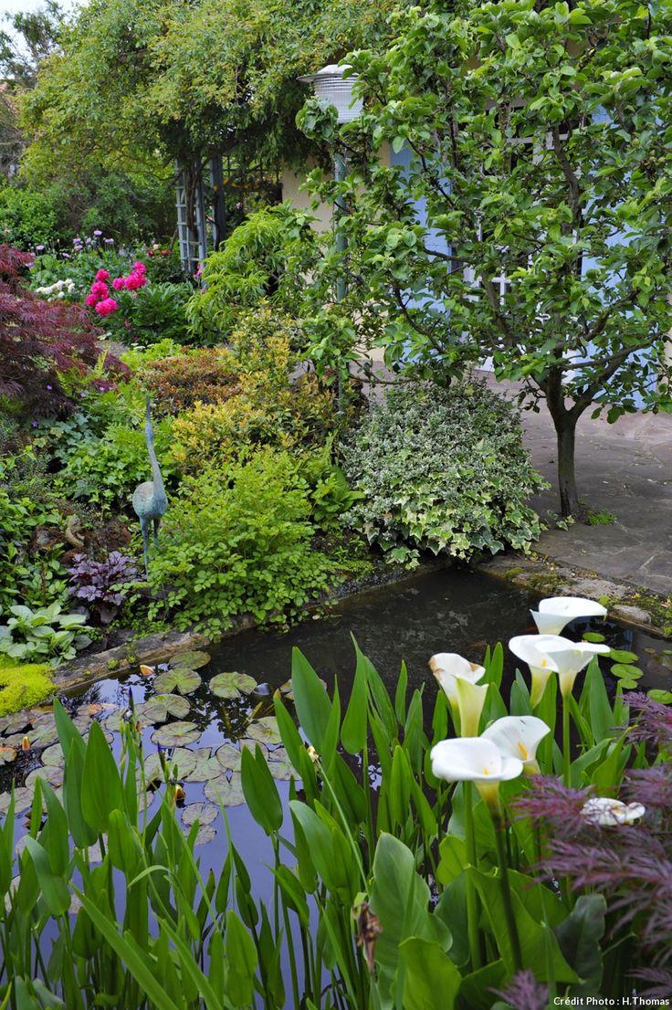 Les 25 meilleures id es de la cat gorie jardins decorados for Culture des jardins