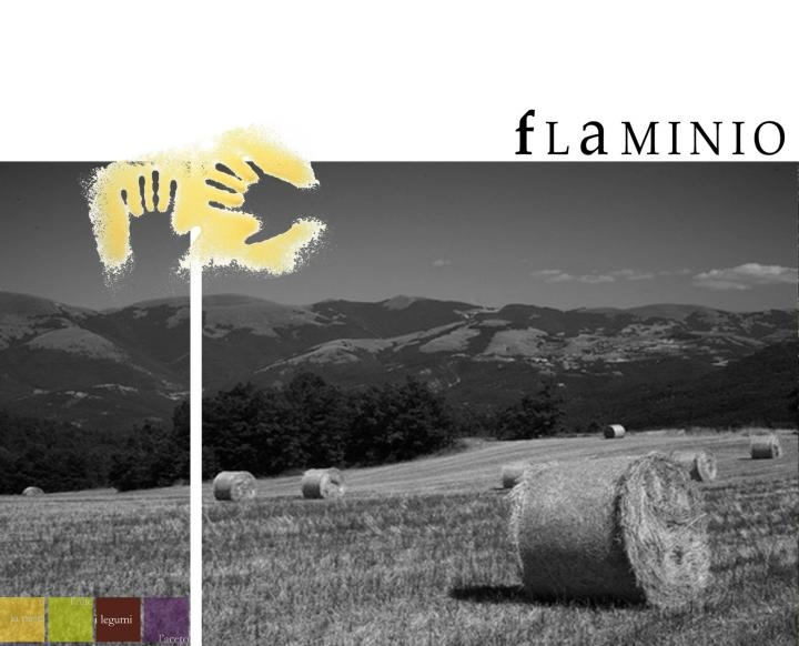 Campania dell'azienda Olio Flaminio.