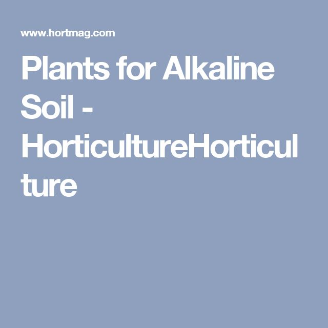 Plants for Alkaline Soil - HorticultureHorticulture