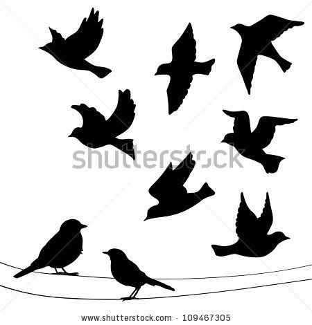 Set of birds silhouettes - flying, sitting. by Mrs. Opossum, via ShutterStock
