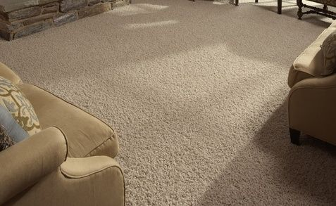 frieze carpet | frieze carpet cool Frieze Carpets