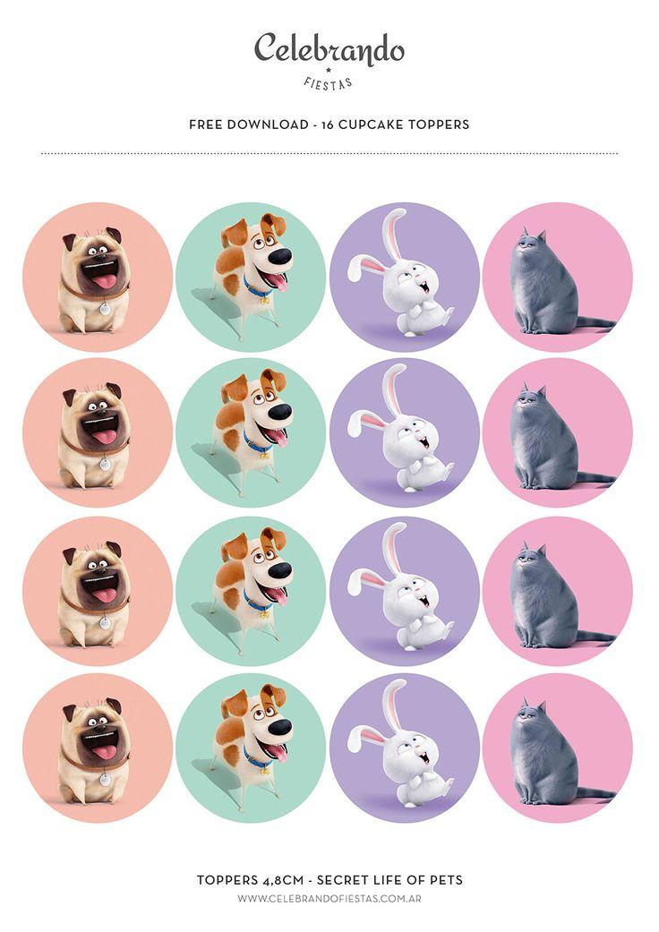 La vida secreta de tus mascotas (Secret life of Pets)   Celebrandofiestas Shop