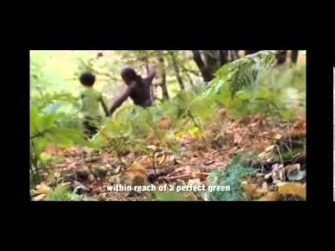 VERDEJANDO ARQUITETURA PAISAGÌSTICA - YouTube