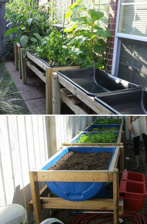 garden bed from 55 gallon barrel drums. 22 Ways for Growing a Successful Vegetable Garden