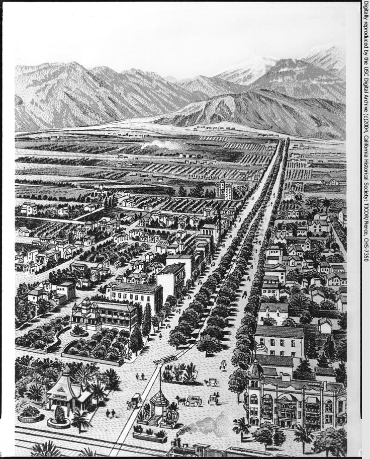 Drawing (or lithograph?) depicting a birdseye view of Ontario, California looking north along Euclid Avenue, 1898