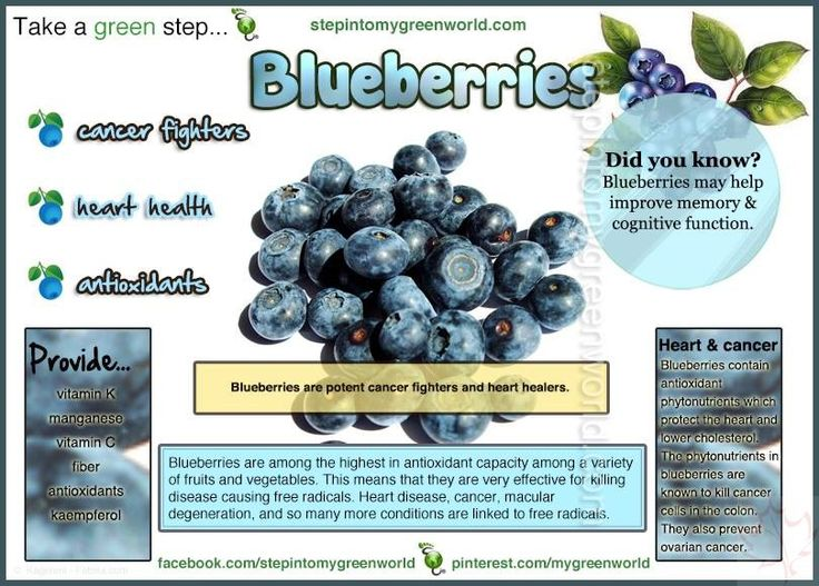 Mmmm Blueberries ~ Delicious & Nutritious! - Canadian Basics