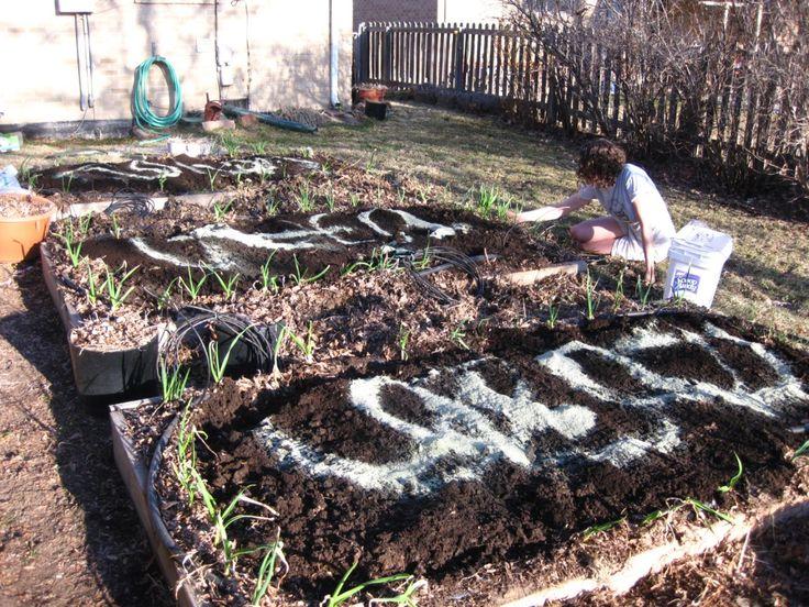 Amending the garden soil, (c) The Herbangardener