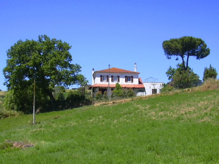 Farmstay Le Cicale view