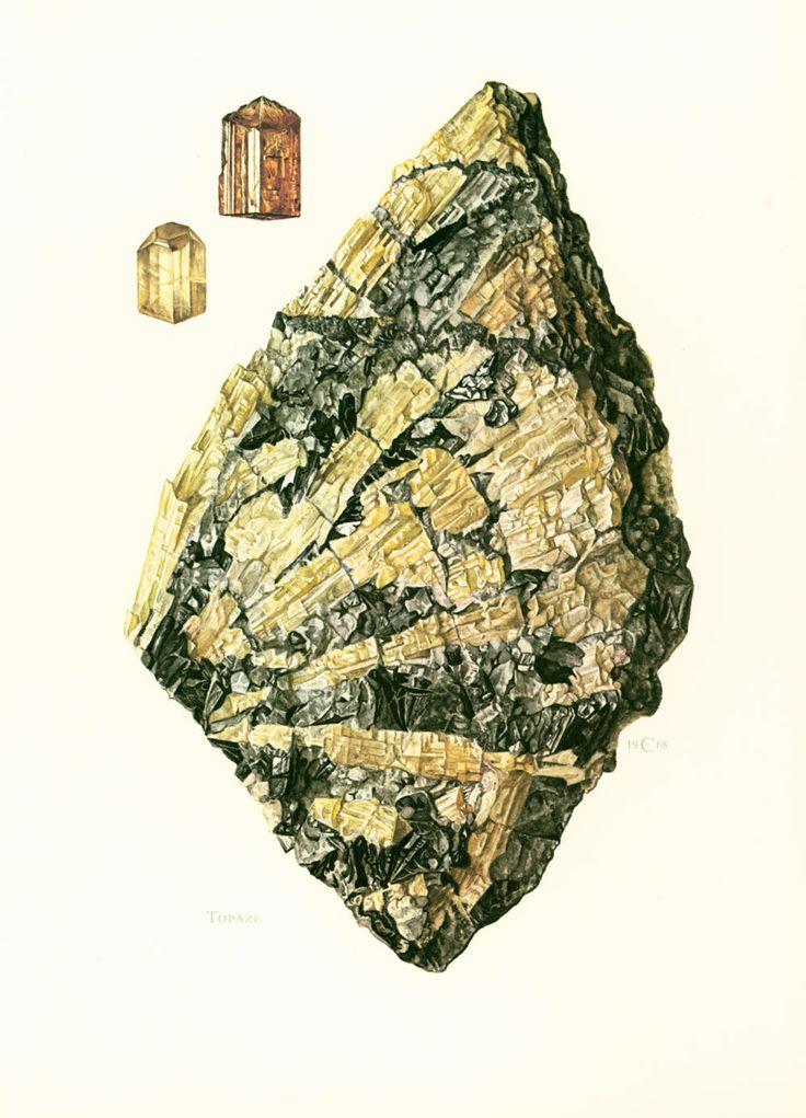 illustration pierre prcieuse joaillerie planche originale minraux roches gologie - 45 Ans De Mariage Pierre Precieuse