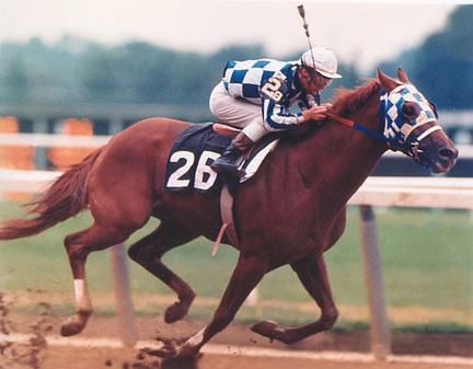 Secretariat...a horse with heart