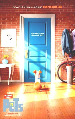 Watch here Where Can I Watch The Secret Life of Pets Online Voir The Secret Life of Pets Filem 2016 Online Where Can I Regarder The Secret Life of Pets Online Watch The Secret Life of Pets MegaMovie for free Filmes FULL CineMagz #Netflix #FREE #Movien This is Premium