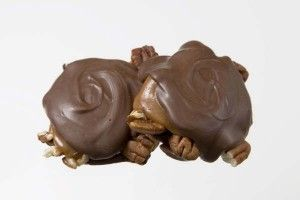 Chocolate candy turtles | Chocolate Factory | Pinterest