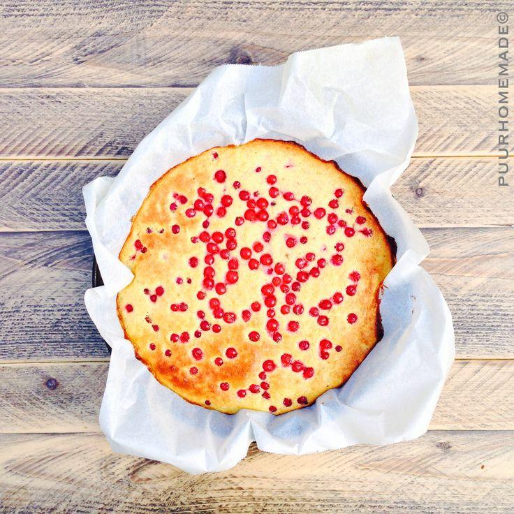 Clafoutis maak ik al heel lang en is eigenlijk het eerste recept wat ik ooit maakte qua taart. Een clafoutis rode bes daarintegen had ik nog nooit gemaakt.