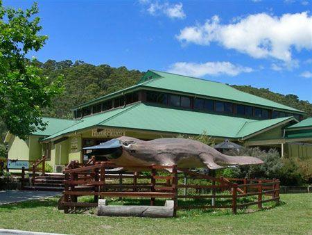 Australian Axeman's Hall of Fame and Platypus and Trout Experience | Latrobe | Tasmania | Australia