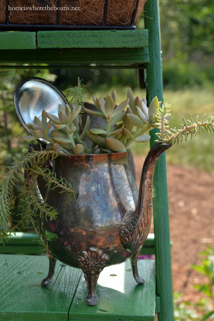 Teapot planted with succulents | homeiswheretheboatis.net #spring #garden