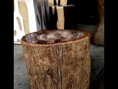 Solid Petrified Wood Coffee Table