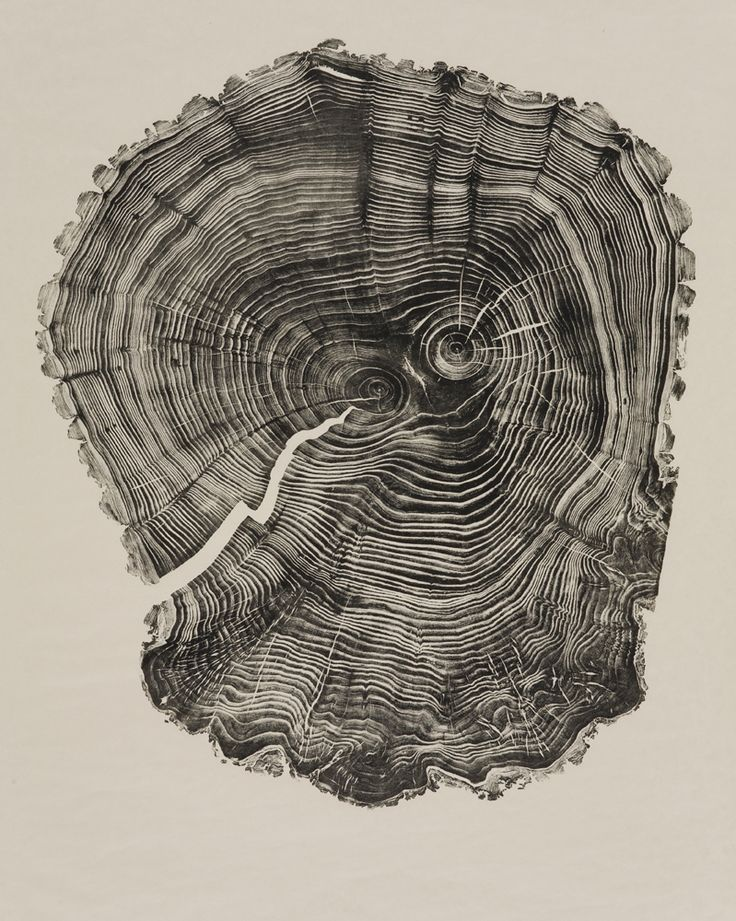 Woodcuts by Bryan Nash Gill - Gill uses recycled lumber, covers it in ink and washi paper, and with his fingers and fingernails presses and scratches the pattern of the tree rings into it until the impression is completely and evenly represented.