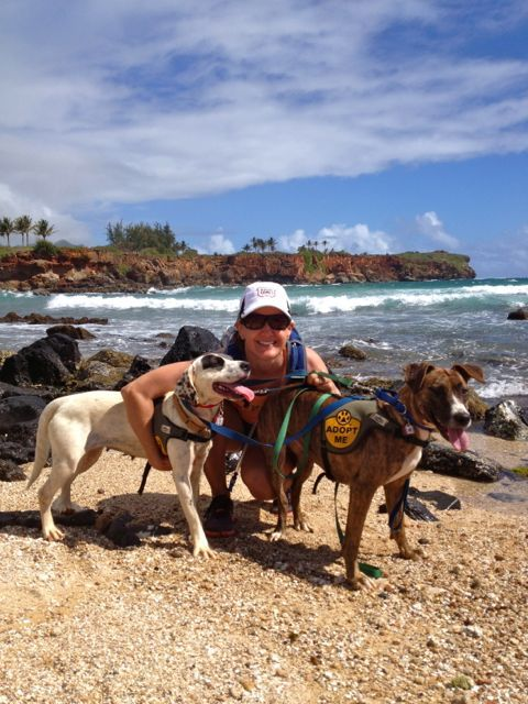 """Enjoy the natural beauty of Kauai and get your """"doggy dose"""" by taking a shelter dog on your adventure for the day - it's okay to fall in love and adopt, too!"""