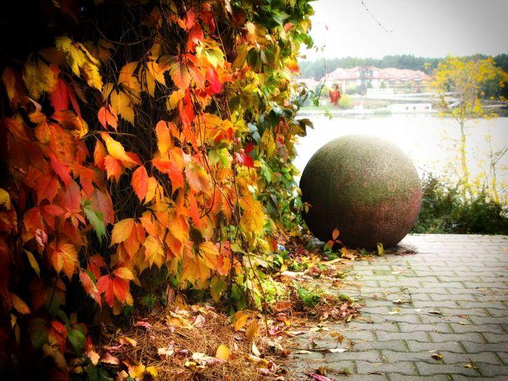 #wagrowiec #wielkopolska #polska #poland #wągrowiec #jeziorodurowskie #lake #autumn #jesien #jesień  Fot. Jarosław Kapałczyński