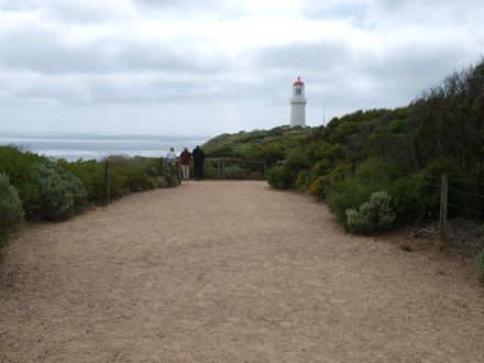 Parks Victoria - Cape Schanck - Walks