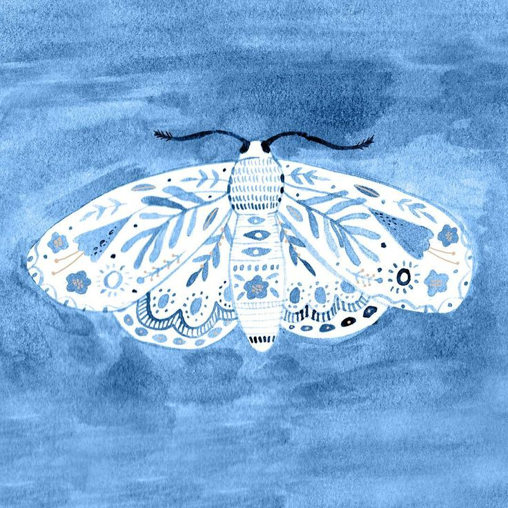 A little inked moth doodle from the weekend  . . . . . #moth #blue #ink #pattern #floral #folk #livecreative #art #artist #illustrator #illustration #nature #handpainted