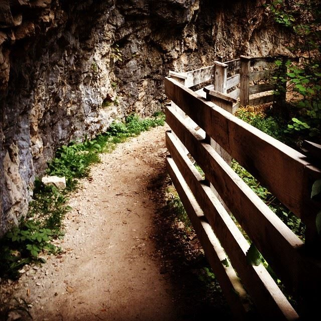 Camminare nel Canyon, verso #SanRomedio #pinetalovers #pinetahotels #valdinon #lastradadellamela #trentino #sanromedio by lucy_2466