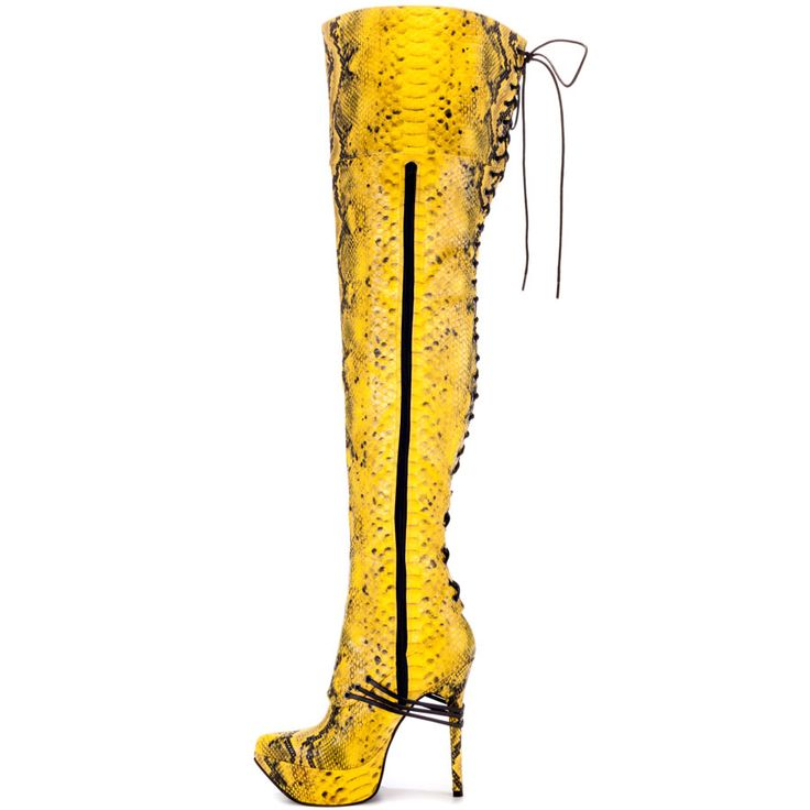 1000  images about dorchelle on Pinterest | Knee high boot Python