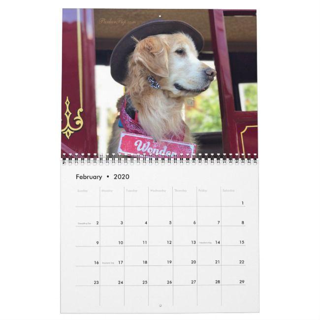 2020 Parkerpup Friends Golden Retriever Calendar Zazzle Com