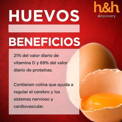 Los huevos promueven la salud del cabello y las uñas debido a su alto contenido de azufre y amplia gama de vitaminas y minerales. Muchas personas encuentran que el cabello crece más rápido después de añadir los huevos a su dieta, especialmente si antes eran deficientes en alimentos que contienen azufre o B12. #ComidasCurativas
