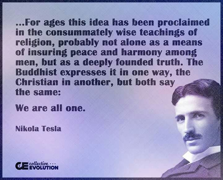 What did Nikola Tesla study in college - answers.com