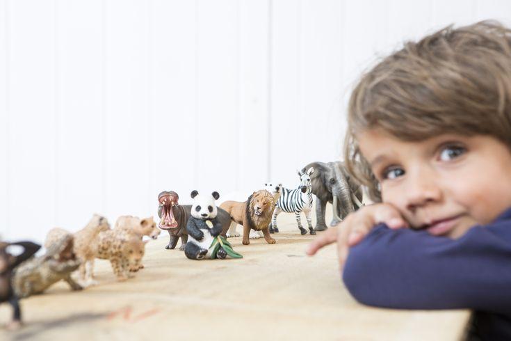 Figurines Schleich animaux sauvages #borntobekids #paris #boutique #jeux #jouets #enfants  #bébé #marque #schleich #figurines #divetissement #cheval  #animaux #cadeaux #histoire #enfantheureux #baby  #figurinesshleich #accessoires #animauxféerique #animauxsauvages #puériculture #naissance