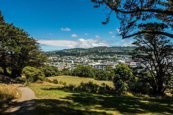Pretty sweet weather today in Wellington... 😎📷 . . . . .  #nzmustdo…