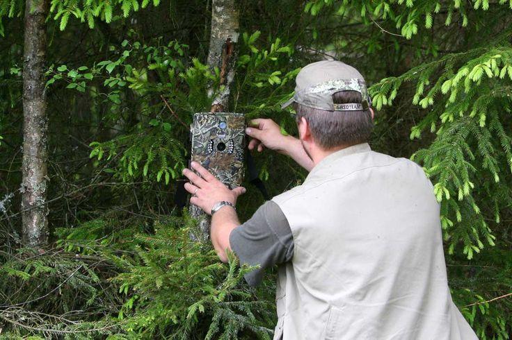 Kamery i polowanie
