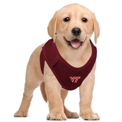 Virginia Tech Hokies Pet Vest Harness - Maroon
