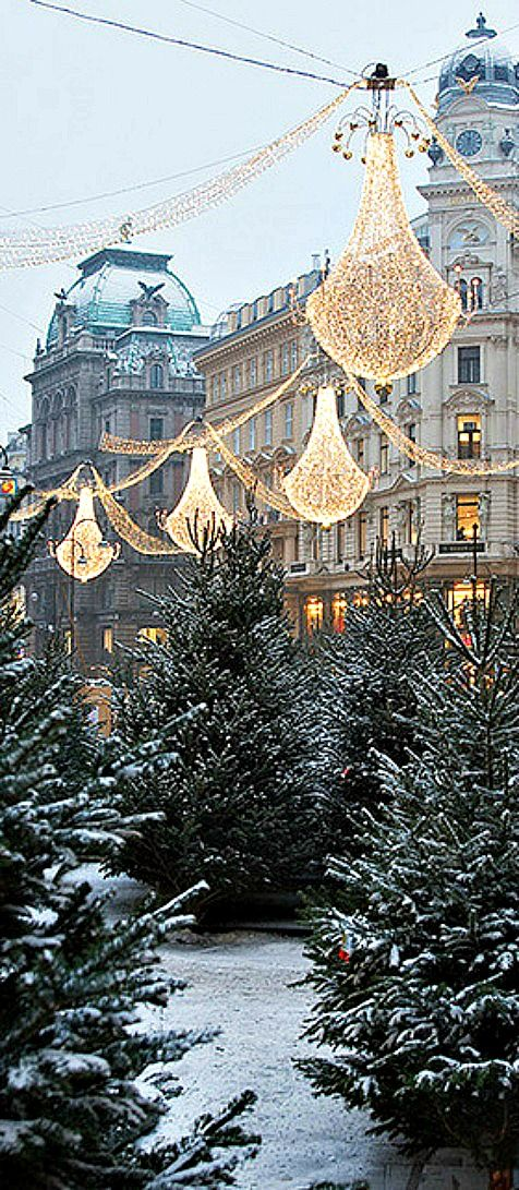 Vienna,Austria -- if I were ever to be proposed to around christmas time... this would be the spot.