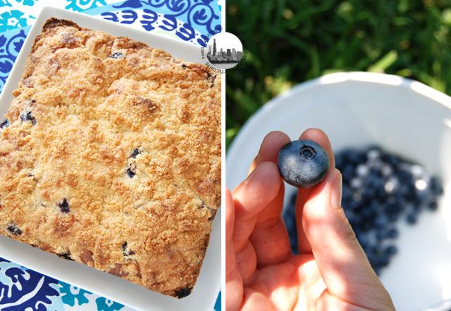 Blueberry almond crumble cake. Made with enormous fresh blueberries picked in Indiana!