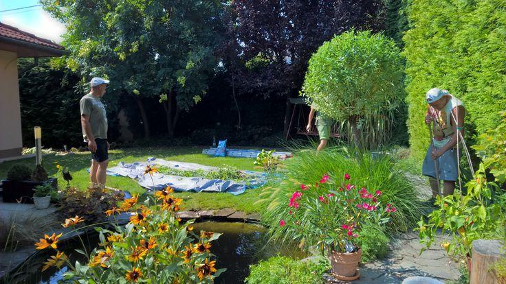 Rýchla údržba v malej záhradke... ak ide práca od ruky ;)