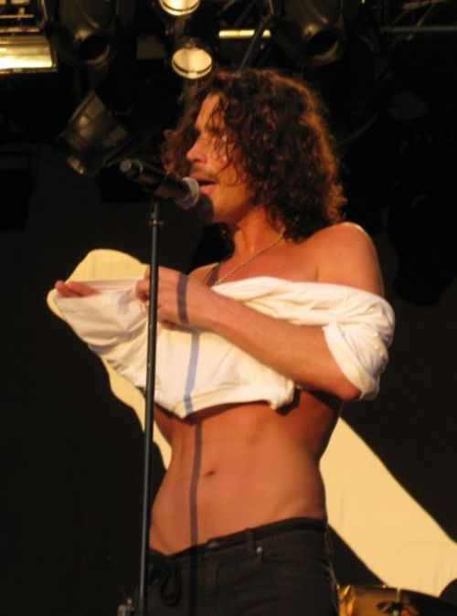 chris cornell show me how to live