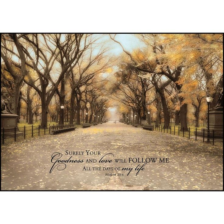 Mounted Print P Graham Dunn Central Park Birthday