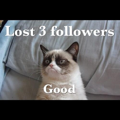 Grumpy Cat Birthday Youtube: 17 Best Images About Fun And Cool Stuff I Like On