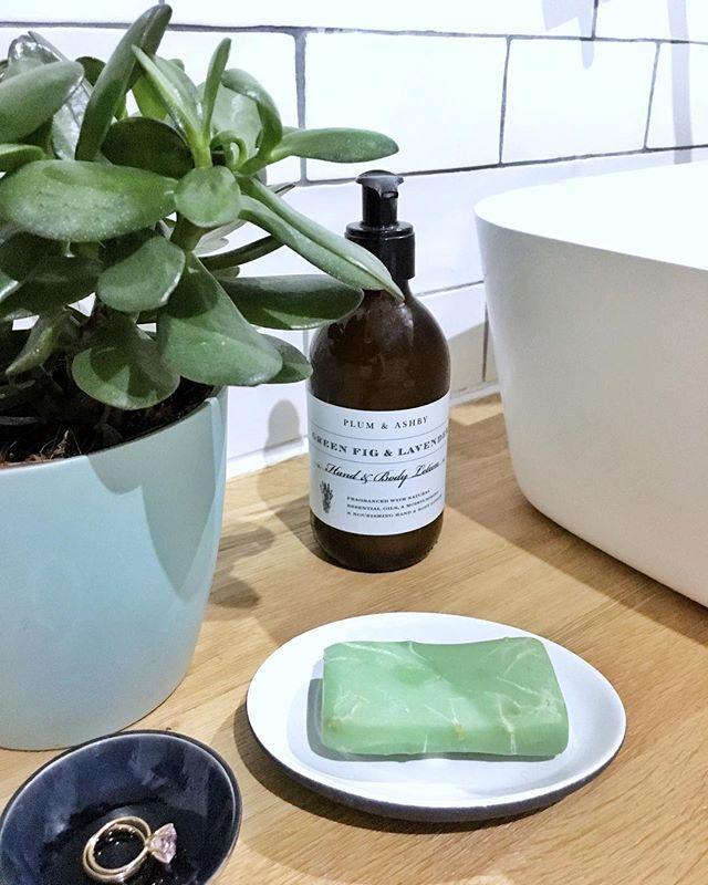 Warum nicht auch Pflanzen im Badezimmer? Eben #meraki - pflanzen für badezimmer