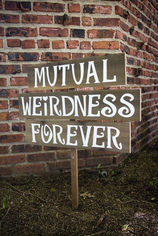 top 25 best mutual weirdness ideas on pinterest dr