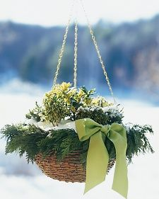 Replace the blooms that fill your hanging basket in warmer months with potted holly, juniper, or other evergreen plants. As an added touch, string together bundles of cedar with floral wire to make a garland. Attach it to the basket edge with wire, and use more wire to fasten a green bow.