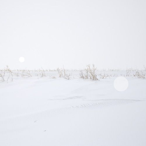 Rebecca Beardmore Snow Grasslands Series (I)- Alberta near Trochu 2014