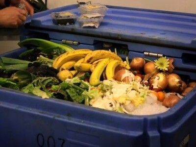 From fork to farm: Startup recycles grocery store food waste into organic fertilizer