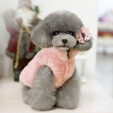 Light Pink Fleece Jacket