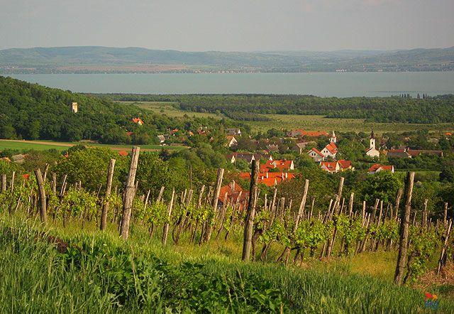 Készítette: Pető Piroska - Dörgicse - 2009.05. Szerelmem, Dörgicse